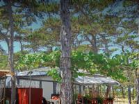 Slika naslovnice sjedišta: Autokamp Planik Zadar (http://www.planik.hr/)