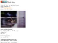 Frontpage screenshot for site: Foto Lab (http://www.mesopust.com/novi/photolab/)