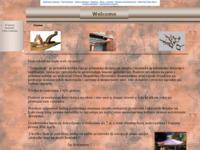 Slika naslovnice sjedišta: Tehnozrak (http://www.tehnozrak.pondi.hr)