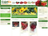 Slika naslovnice sjedišta: Cvjetex - cvjetni express, web trgovina cvijeća (http://www.cvjetex.com)
