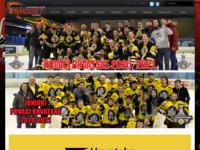 Slika naslovnice sjedišta: Klub hokeja na ledu Mladost - Zagreb (http://www.khl-mladost.hr)
