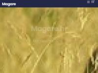Slika naslovnice sjedišta: magare (http://magare.hr)