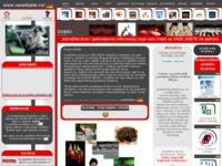 Frontpage screenshot for site: (http://www.vasedijete.com)