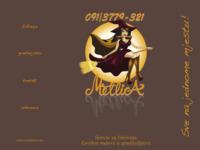 Slika naslovnice sjedišta: Servis za čišćenje (http://www.metlica.hr)