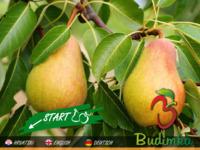 Slika naslovnice sjedišta: Agroturizam (http://www.budimka.hr)