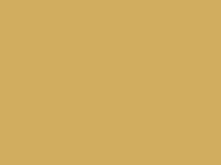 Frontpage screenshot for site: Bacchus Restaurant - Palmižana (http://www.bacchus-palmizana.com)
