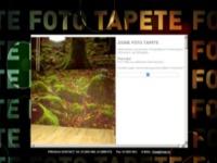 Slika naslovnice sjedišta: Zidne foto tapete (http://www.foto-tapete.com.hr)