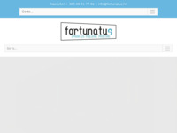 Frontpage screenshot for site: (http://fortunatus.hr)
