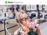 Frontpage screenshot for site: Brze pozajmice (http://www.brzepozajmice.com)