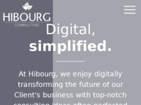 Frontpage screenshot for site: Hibourg Consulting (http://www.hibourg.com)
