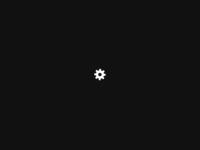 Slika naslovnice sjedišta: Pecho - komponente za automobilsku i elektro industriju (http://www.pecho.hr)